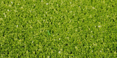 artificial grass quotes