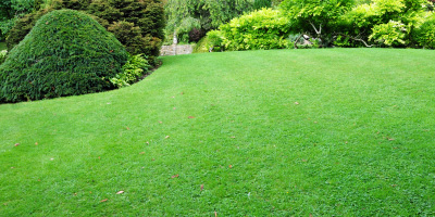 lawn mowing costs
